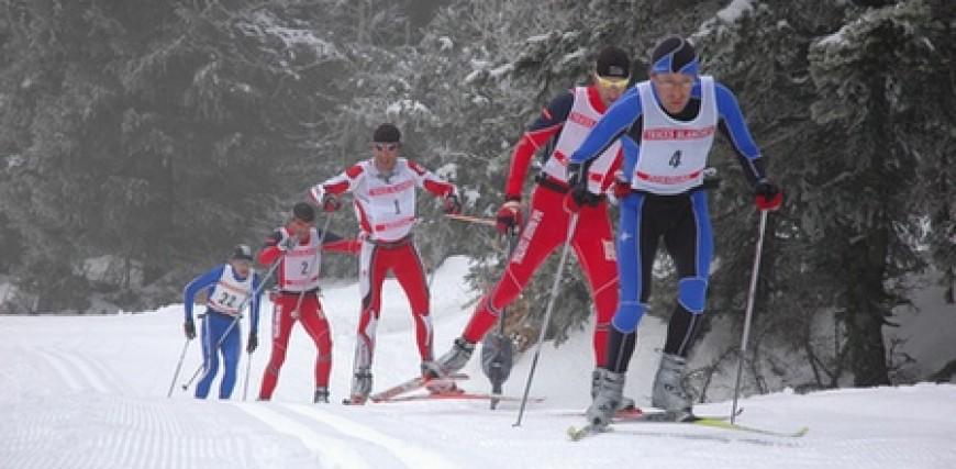 Cross-country skiing, alpine skiing and snowshoe trekking